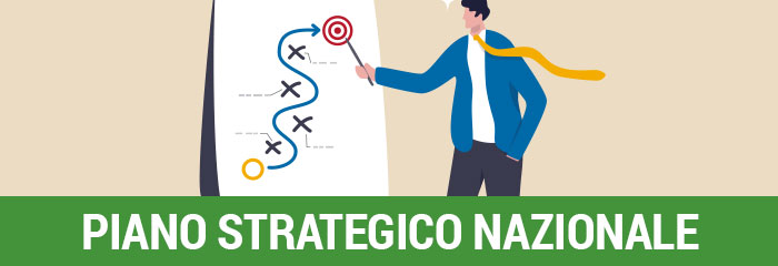 Piano Strategico Nazionale