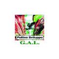 Logo GAL Pollino Sviluppo
