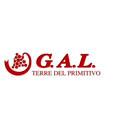 Logo GAL Terre del Primitivo