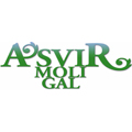 Logo GAL ASVIR Moligal