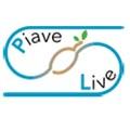 """Logo progetto """"PIAVE LIVE"""""""