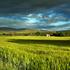 immagine paesaggio rurale