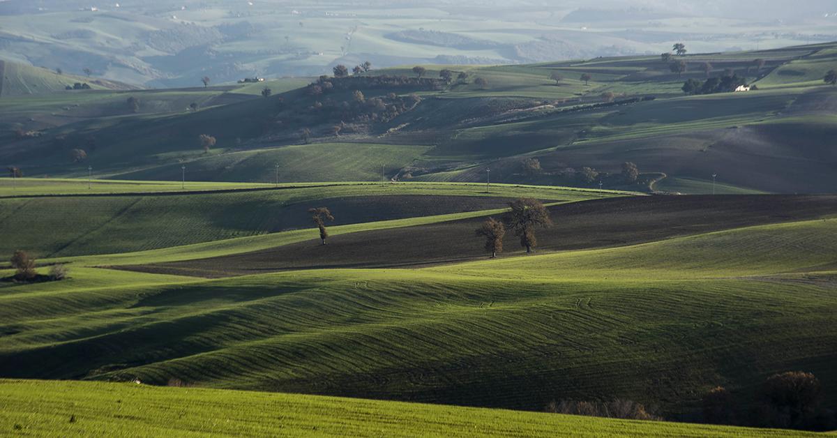 Il paesaggio policolturale di Fibbianello del Comune di Semproniano