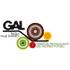 Logo GAL Bassa Valle d'Aosta