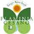 Logo GAL Flaminia Cesano