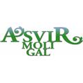 Logo GAL A.Svi.R. MoliGal