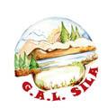 Logo GAL della Sila