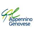 Logo GAL Valli Gesso, Vermagnana, Pesio