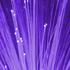 immagine fibre ottiche