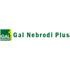 Logo GAL Nebrodi Plus