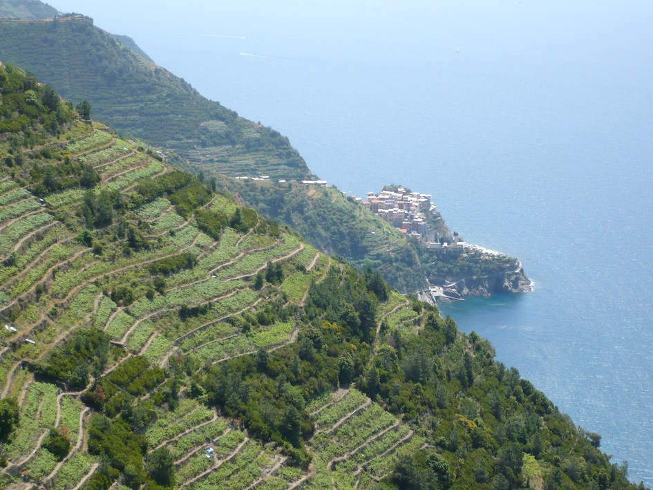 Registro nazionale paesaggi rurali storici - Liguria
